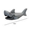 Küçük Grey Köpekbalığı