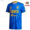 Tigres 20 21 ausente + Liga MX