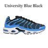 Université Bleu Noir