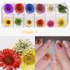 24 bloemen b