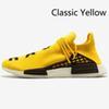 D17 고전적인 노란색