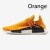 D21 오렌지
