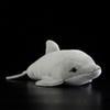Dolphins Oceanic40cm.