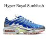 Hyper royale Sunblush