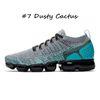 # 7 Dusty Cactus36-45