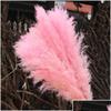 5pcs-pink
