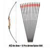 40 Lbs Bow 12 Arrow