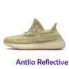 Антильский рефлексив