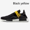D19 Siyah Sarı