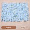 Ciel bleu-1pc 60cmx40cm