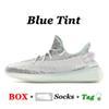 C31 الأزرق تينت 36-48