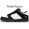 Panda Pigeon.