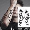 12-TBS8096