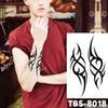 07-TBS8018