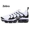 17 Zebra 36-45
