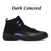 Concordia oscura