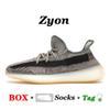C12 ZYON 36-48.