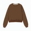 Brown Sweatshirt 2