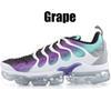 36-47 Grape