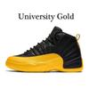 12s de oro universitario