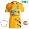 2122 Tigres Ev