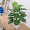 60cm 18 evergr-1 PCS 식물 없음 냄비
