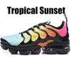 36-47 Tropical Sunset