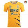 Tigres 21 22 Home