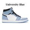 Bleu de l'université