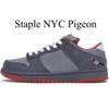 PIGEON STAFLE NYC.