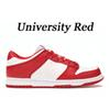 Universidade vermelha