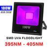 100W UV (395NM-405NM) 85V-265V Floodlight