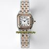 CAR-A28 (6) Two Tone Rose Gold Silvery