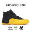 B8 University Gold 40-47.