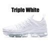 36-47 الثلاثي الأبيض