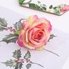 Gradient Rose 18