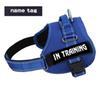 A16 azul com tag