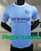 New York City Player-Version