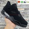06 Black Cat 2020