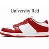 Università Rosso.