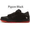 Pigeon Black