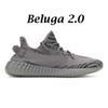 Beluga 2.0