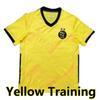Sarı eğitim