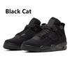 4 gatto nero