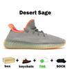 حكيم الصحراء