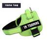 A16 verde com tag