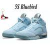 5s bluebird-1