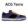 ACG TERRA.
