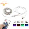 USB 5V RGB LED Strip 5050 60LEDs m TV Background Lighting with 17Key RF Controller 50cm   1m   2m Set