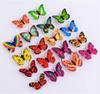 Gemischter Schmetterling